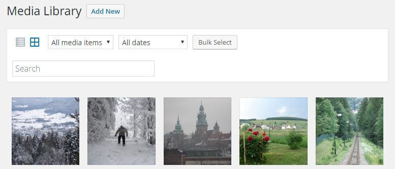 the default view listing images in the wordpress media manager