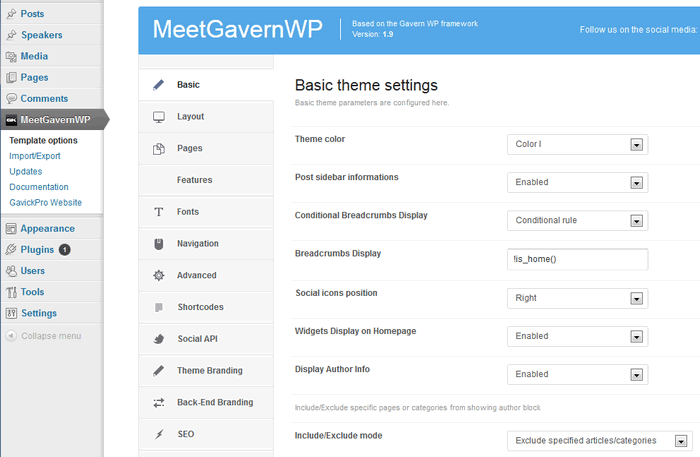 GavernWP framework options