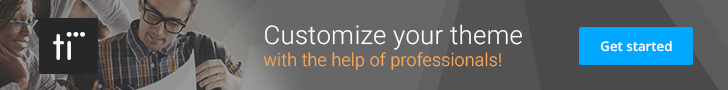 TidyCustoms Optimization and Customization Website Service
