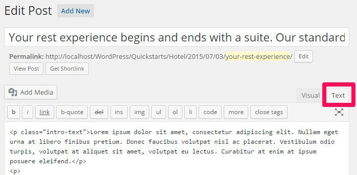 activating text mode in the wordpress post edit screen