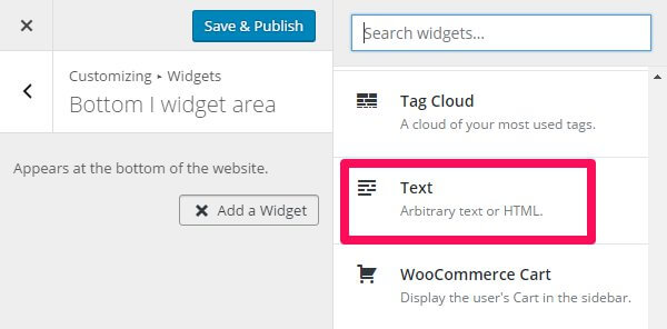 choosing a text widget in the wordpress customizer