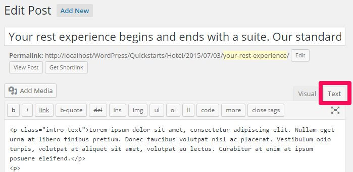 running the wordpress post editor in text mode